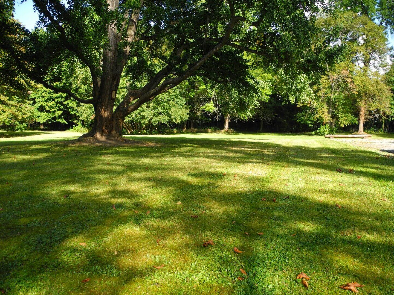 Der ehemalige Klostergarten ist heute der Schulpark der Internatsschule